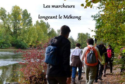 Marche à Cournon